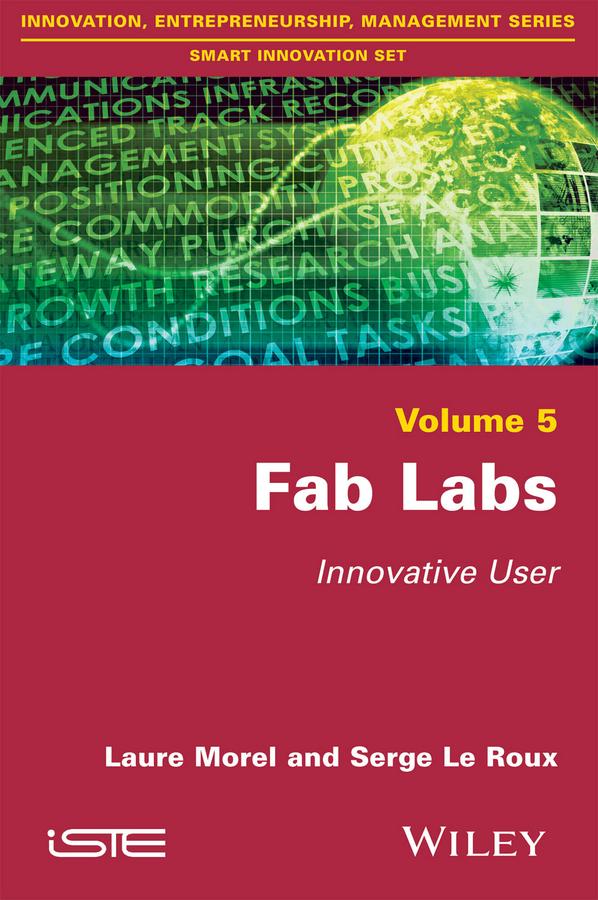 Fab Labs. Innovative User
