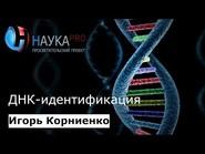 ДНК-идентификация