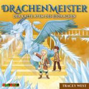 Der kalte Atem des Eisdrachen - Drachenmeister 9