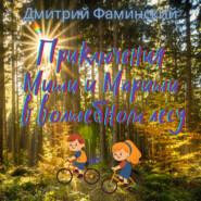 Приключения Миши и Мариши в волшебном лесу
