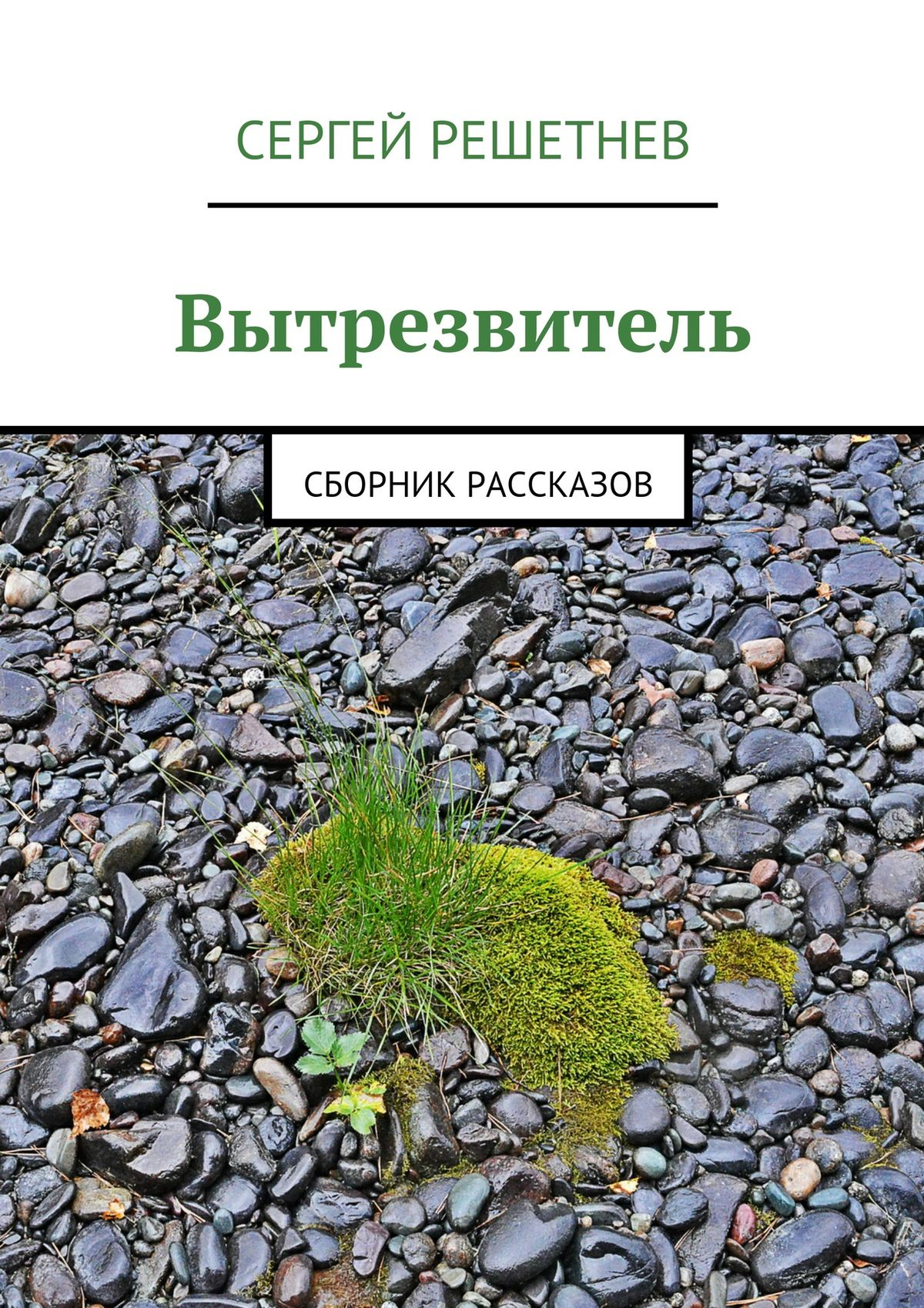Сергей Решетнёв Вытрезвитель