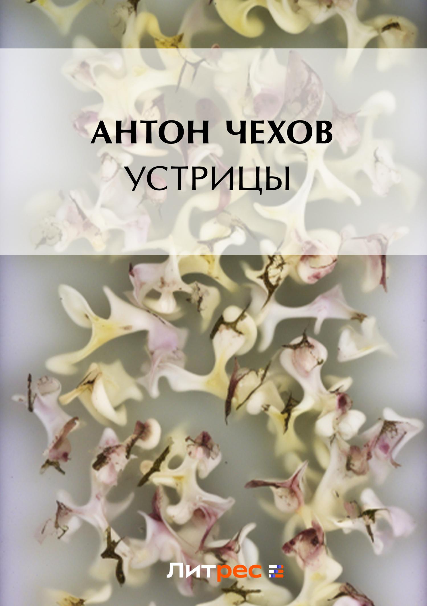 Антон Чехов Устрицы антон чехов грач
