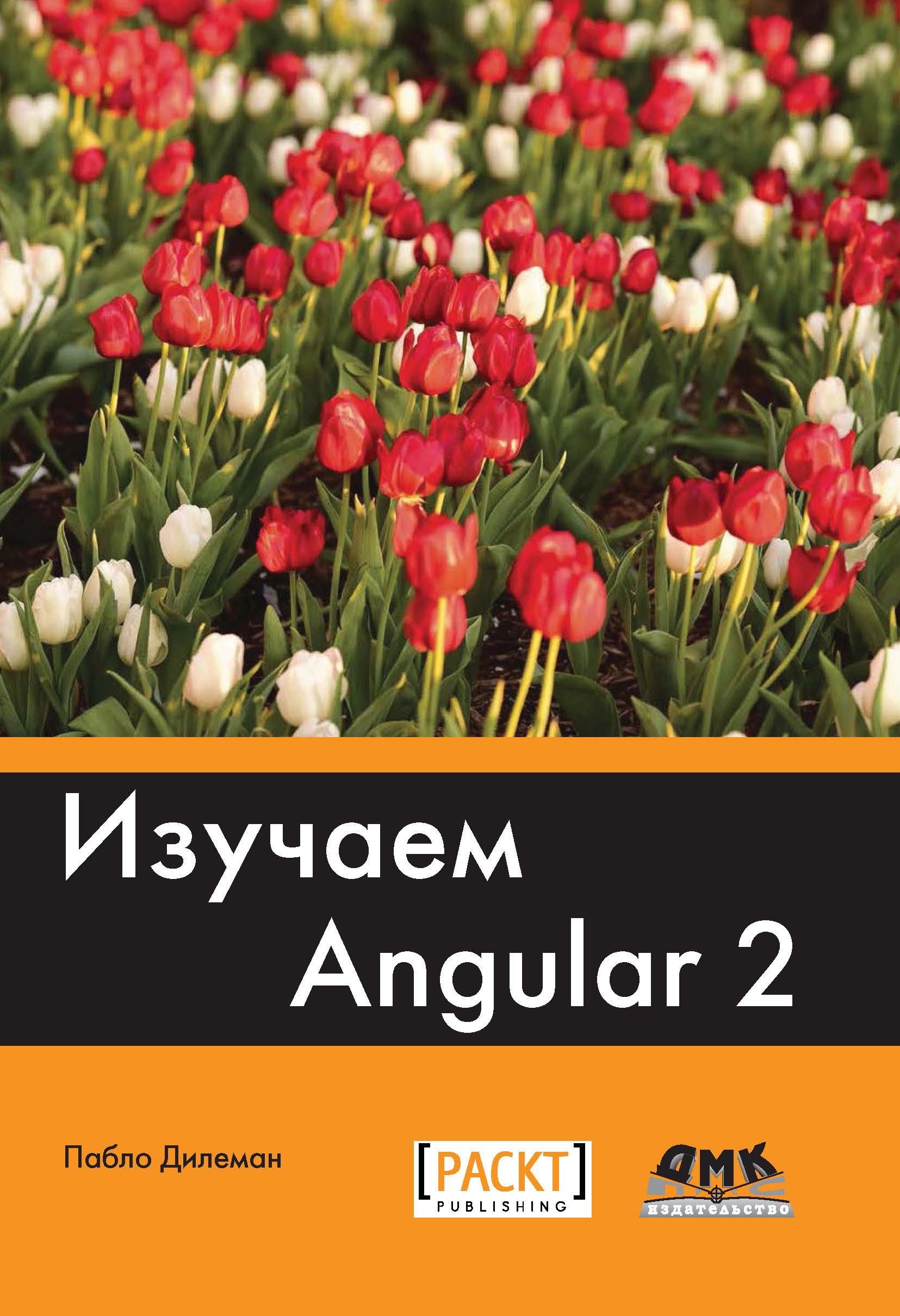 Пабло Дилеман Изучаем Angular 2 фильтры для веб камеры