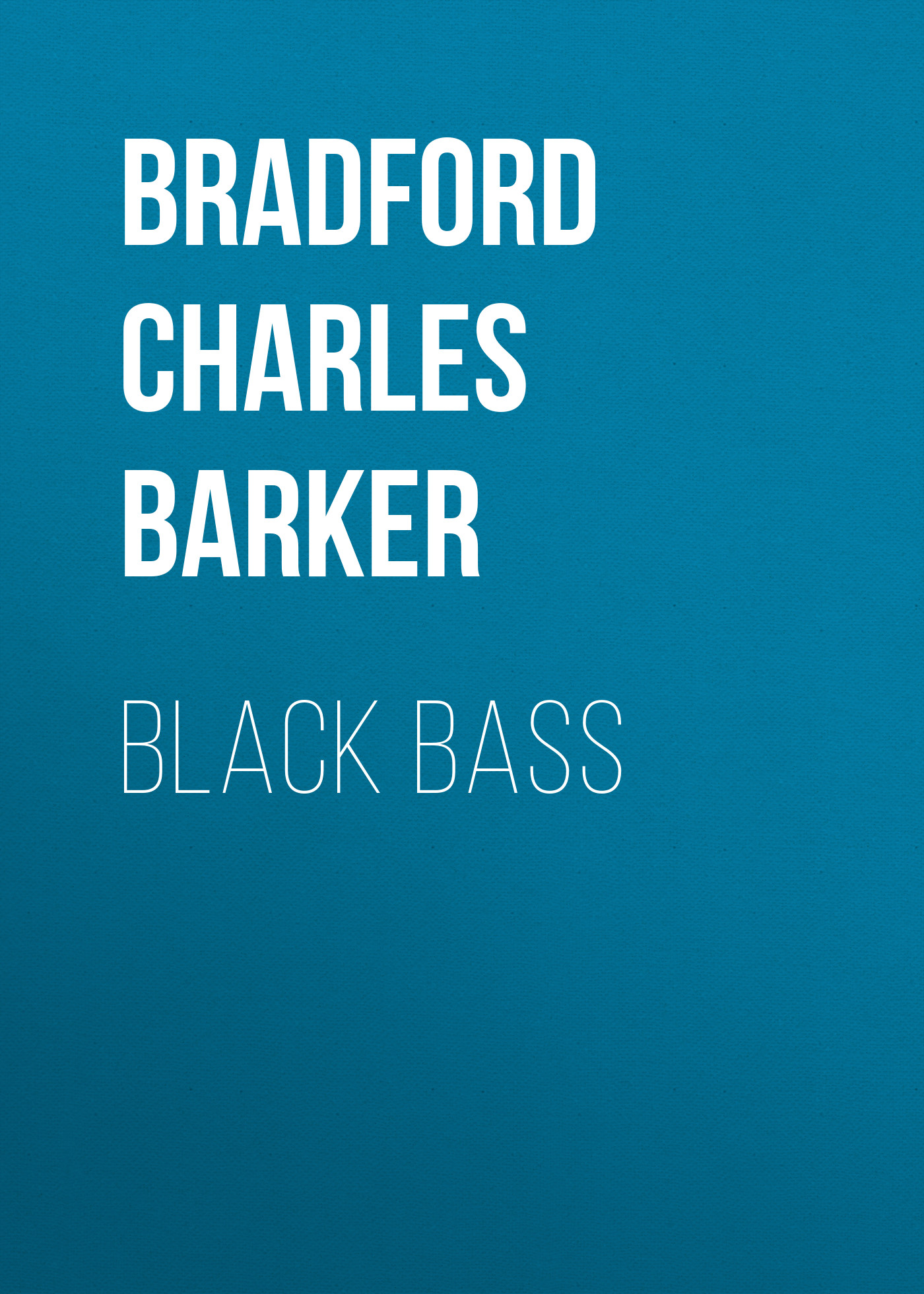 Bradford Charles Barker Black Bass rotosound rs88ld black nylon flatwound bass strings