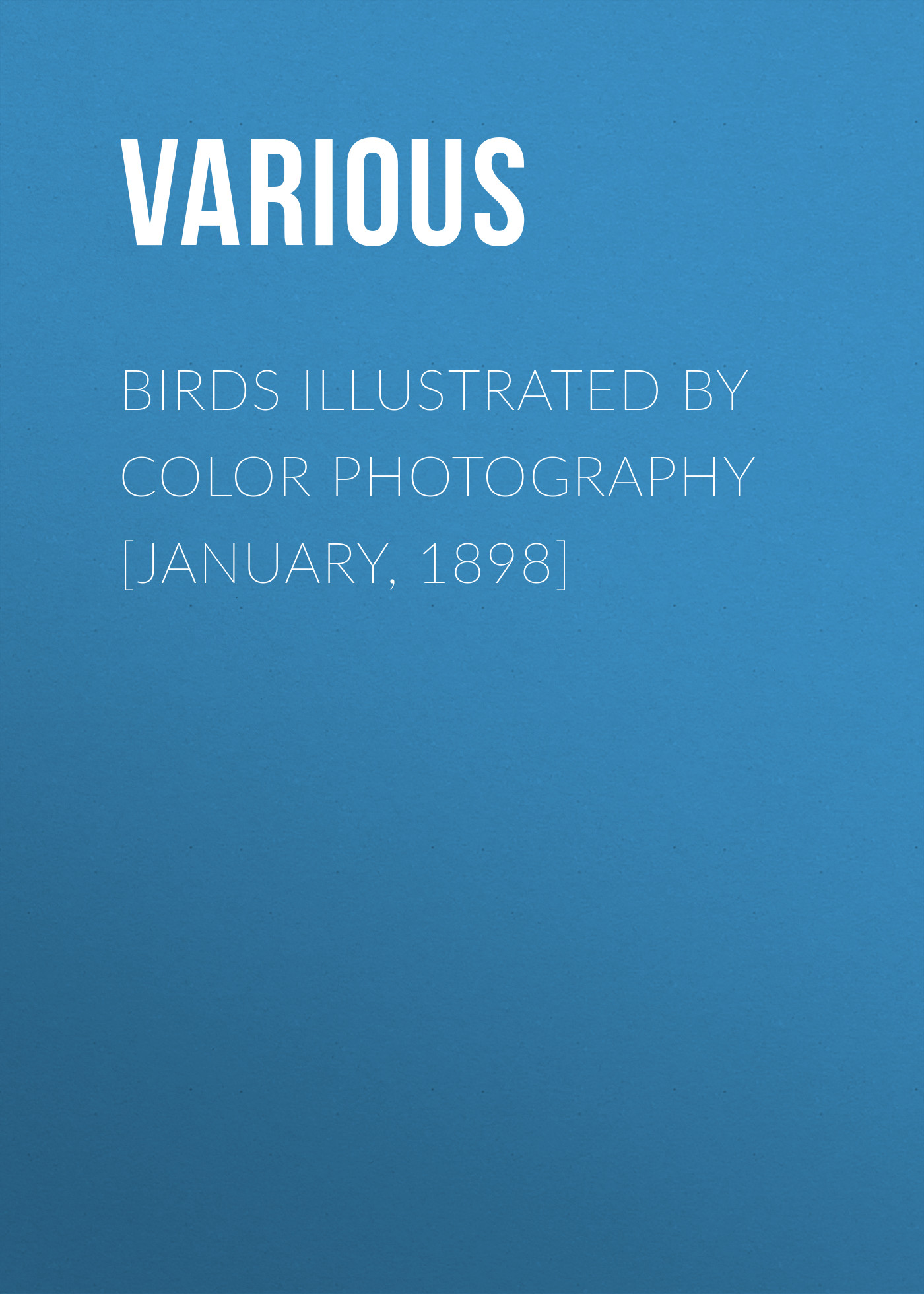 Various Birds Illustrated by Color Photography [January, 1898] d 6521 dark grey backdrop newborn photography backdrop retro pure color pet photography backgrounds 4x6ft 1 25x2m