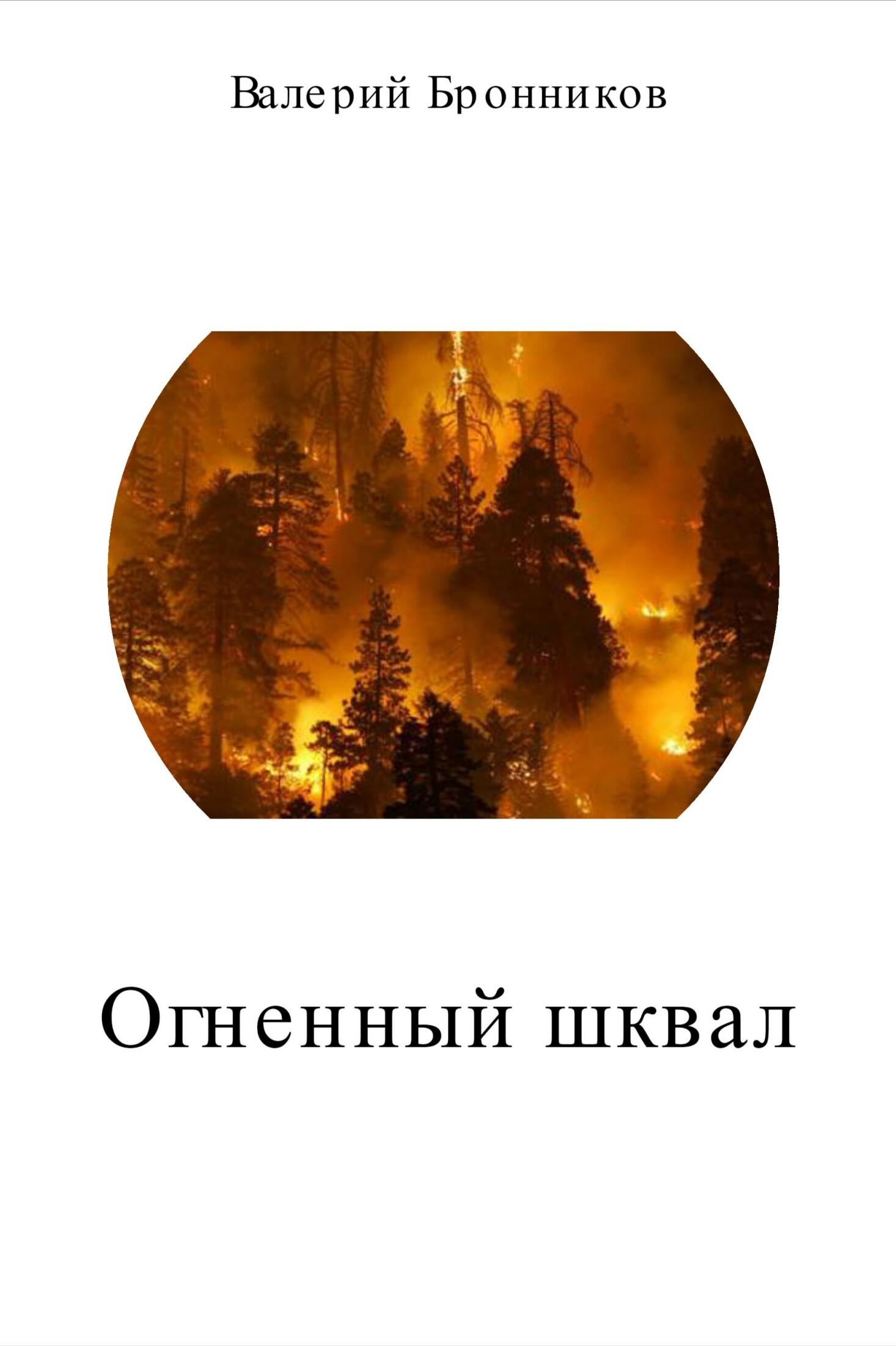Валерий Викторович Бронников Огненный шквал нож шквал