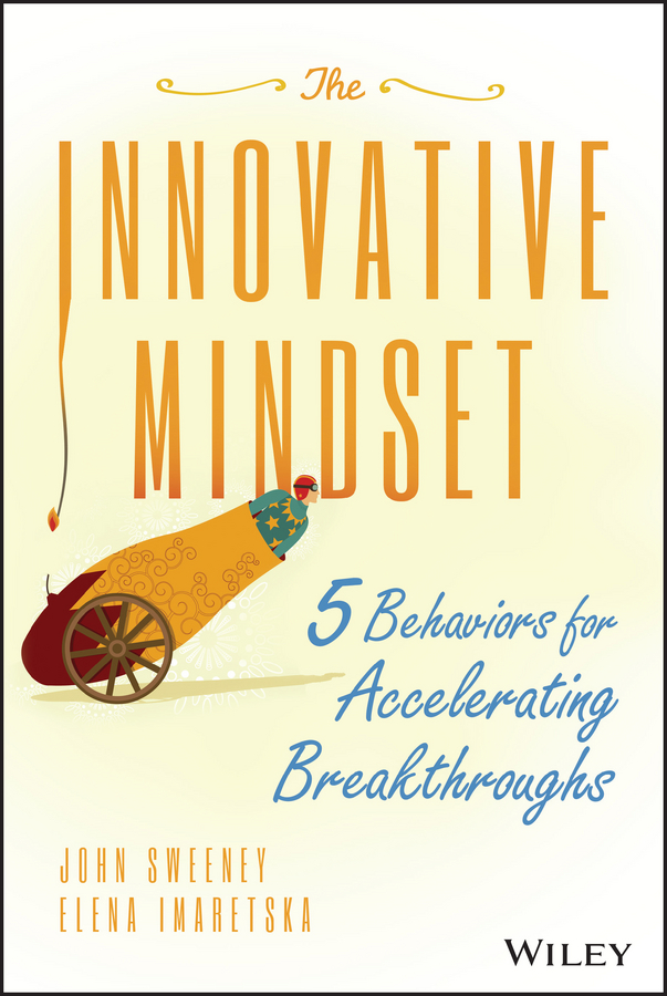 John Sweeney The Innovative Mindset. 5 Behaviors for Accelerating Breakthroughs color it chic dressy interiors by you