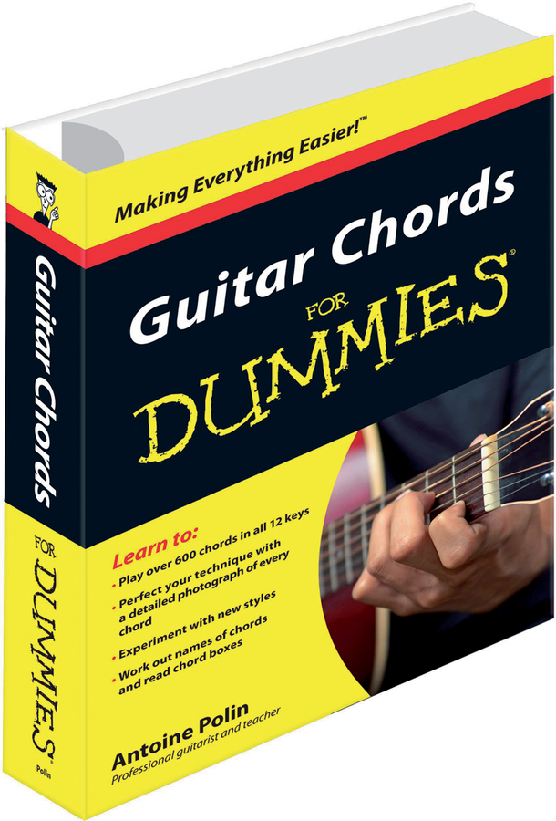 Antoine Polin Guitar Chords for Dummies from the factory wholesale special electric guitar case shaped like a guitar the color can be changed on request