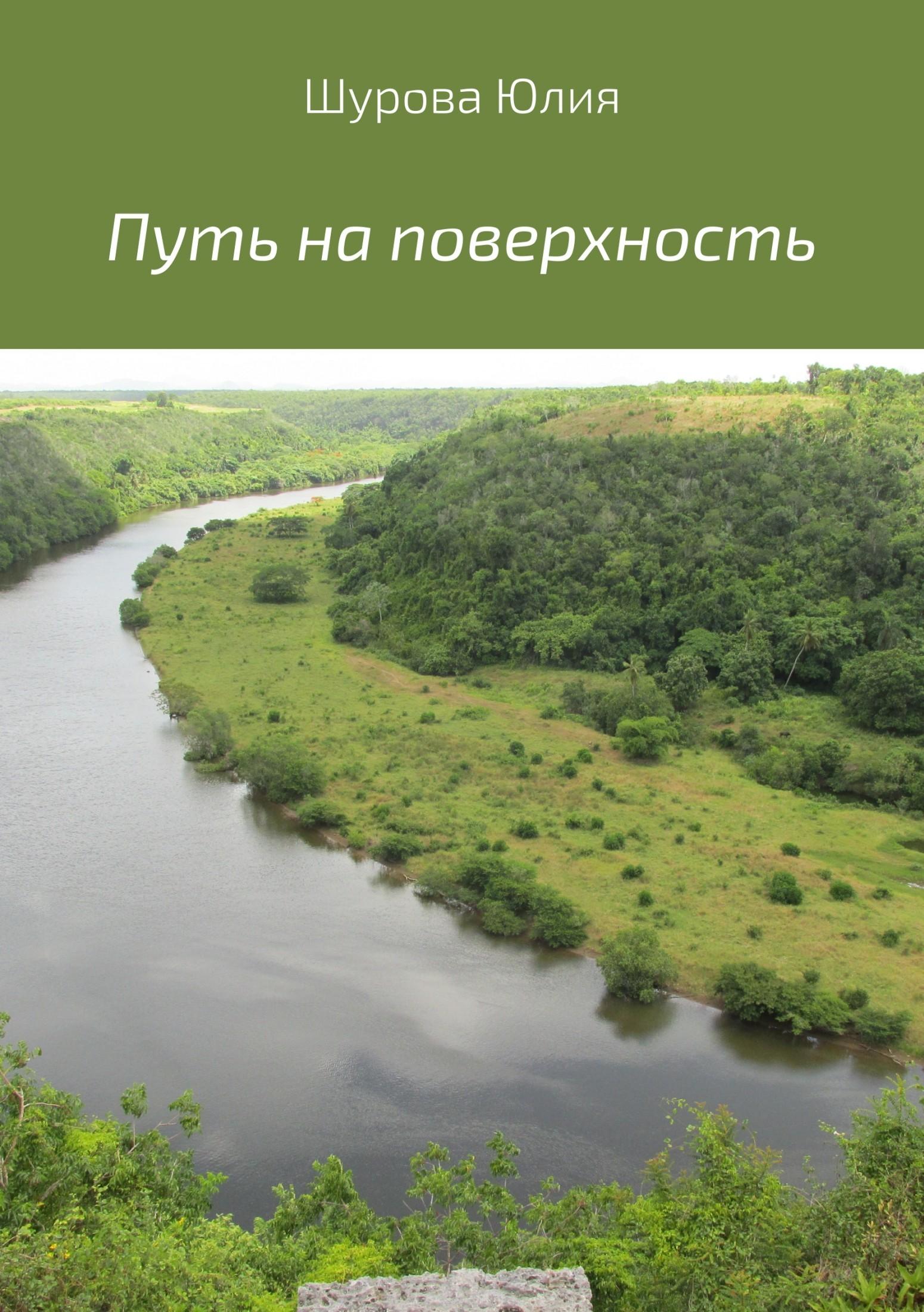 цена на Юлия Михайловна Шурова Путь на поверхность