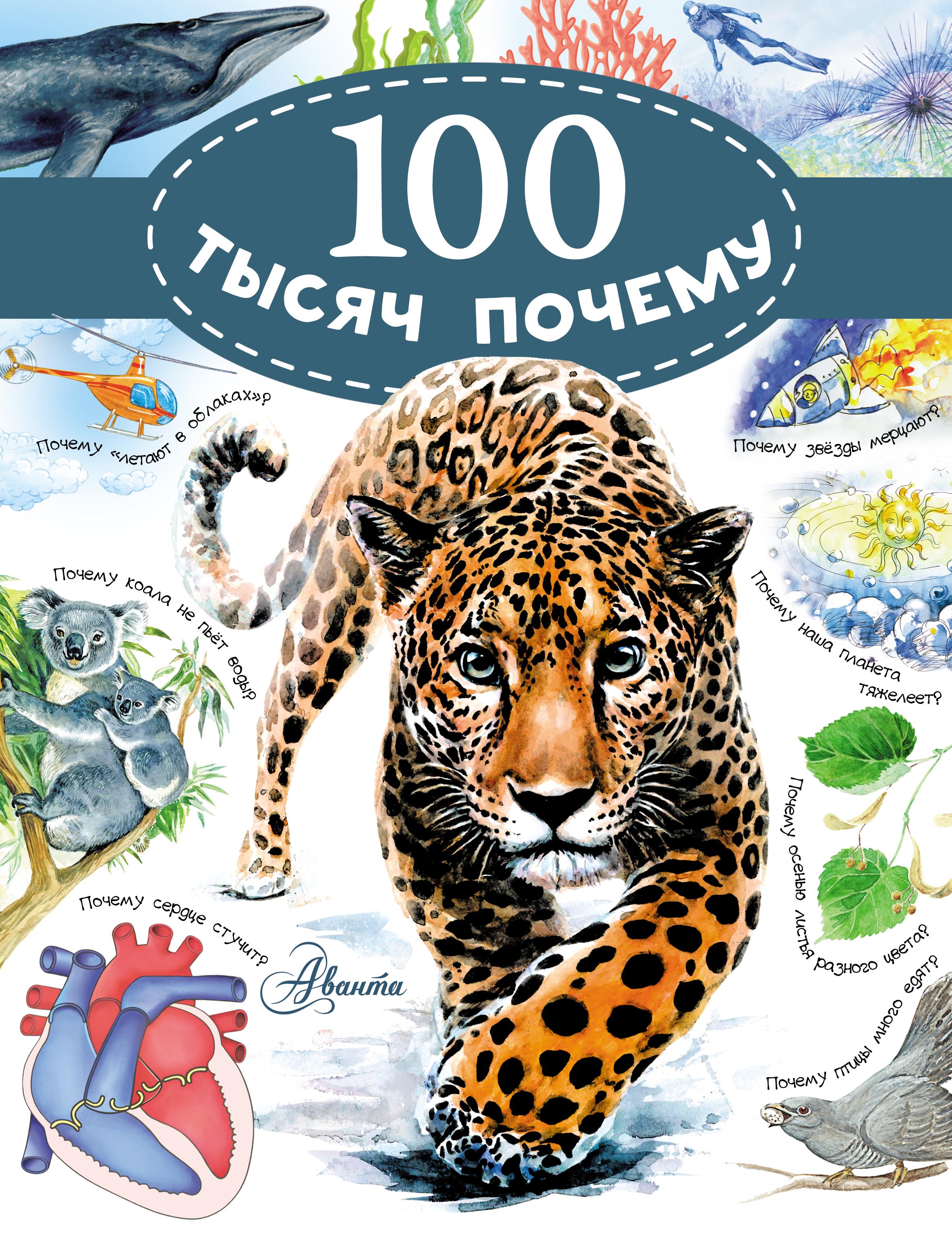Владимир 100 тысяч почему