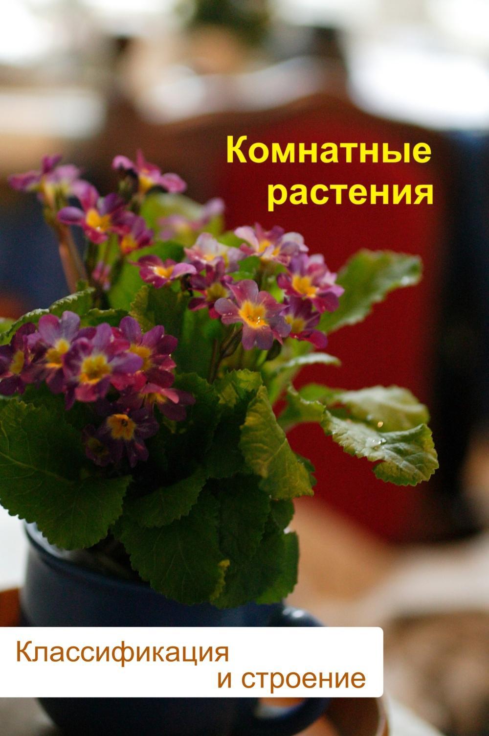 Илья Мельников Комнатные растения. Классификация и строение