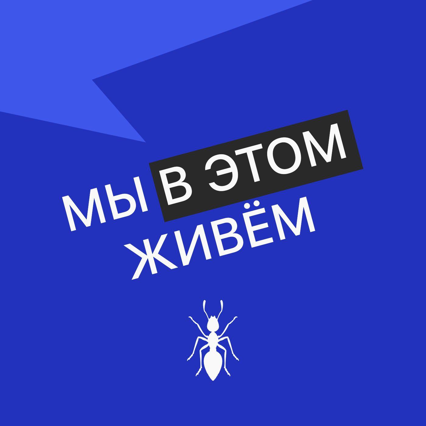 Выпуск № 03 сезон 3