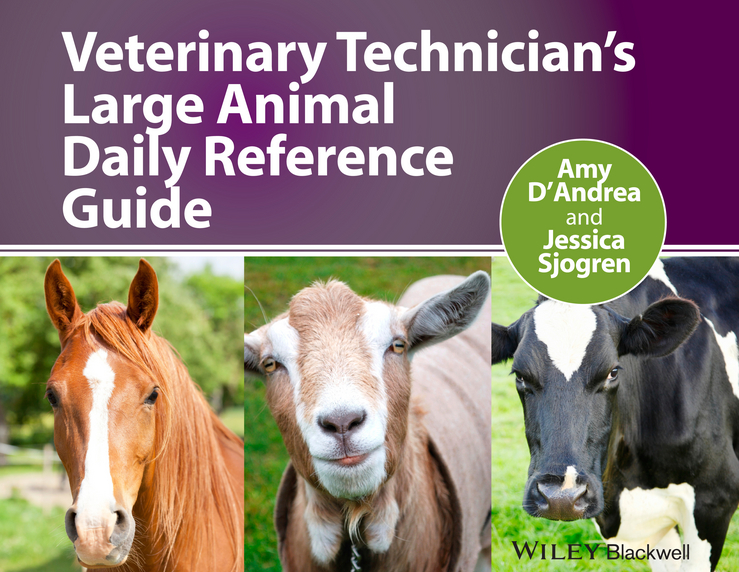 D'Andrea Amy Veterinary Technician's Large Animal Daily Reference Guide hackett timothy b veterinary emergency and critical care procedures enhanced edition