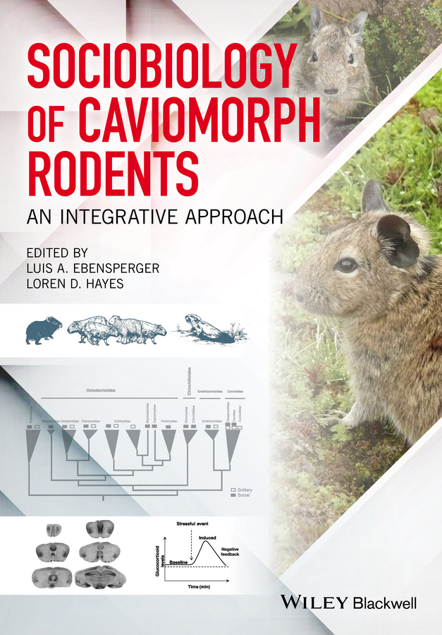 Loren Hayes D. Sociobiology of Caviomorph Rodents. An Integrative Approach richard ladle biogeography an ecological and evolutionary approach