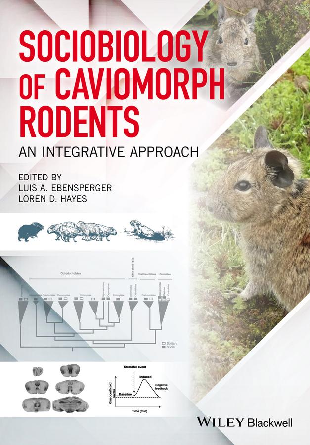 Loren Hayes D. Sociobiology of Caviomorph Rodents. An Integrative Approach loren hayes d sociobiology of caviomorph rodents an integrative approach