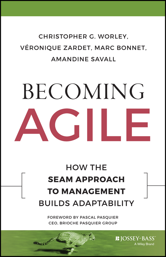 Фото - Veronique Zardet Becoming Agile. How the SEAM Approach to Management Builds Adaptability decoding the socio economic approach to management results of the second seam conference in the united states