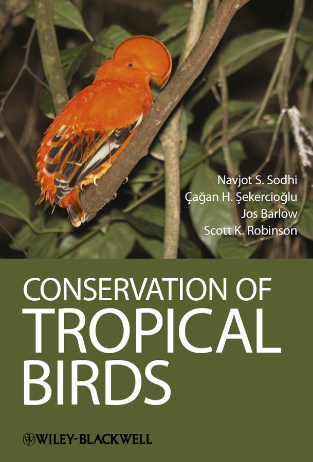 Jos Barlow Conservation of Tropical Birds anders c all the birds in the sky