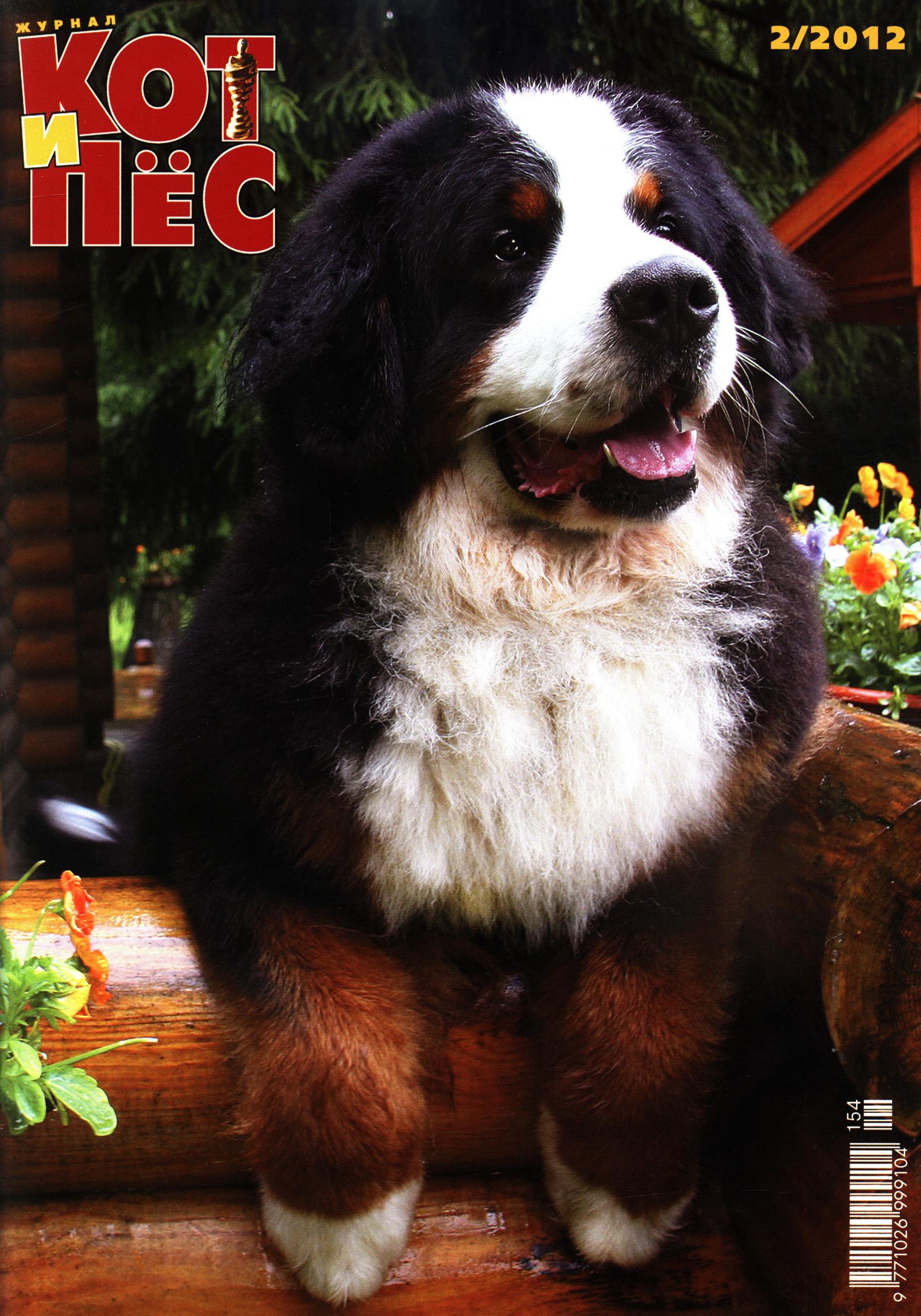 Отсутствует Кот и Пёс №2/2012