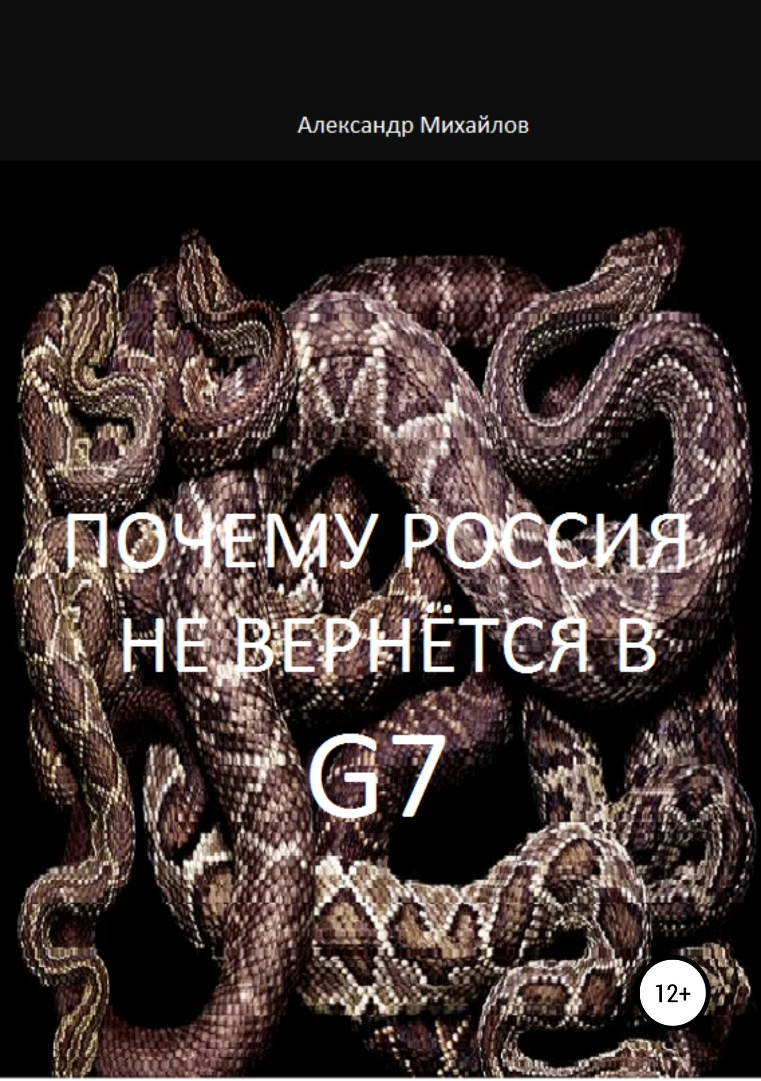 фото обложки издания Почему Россия не вернётся в G7