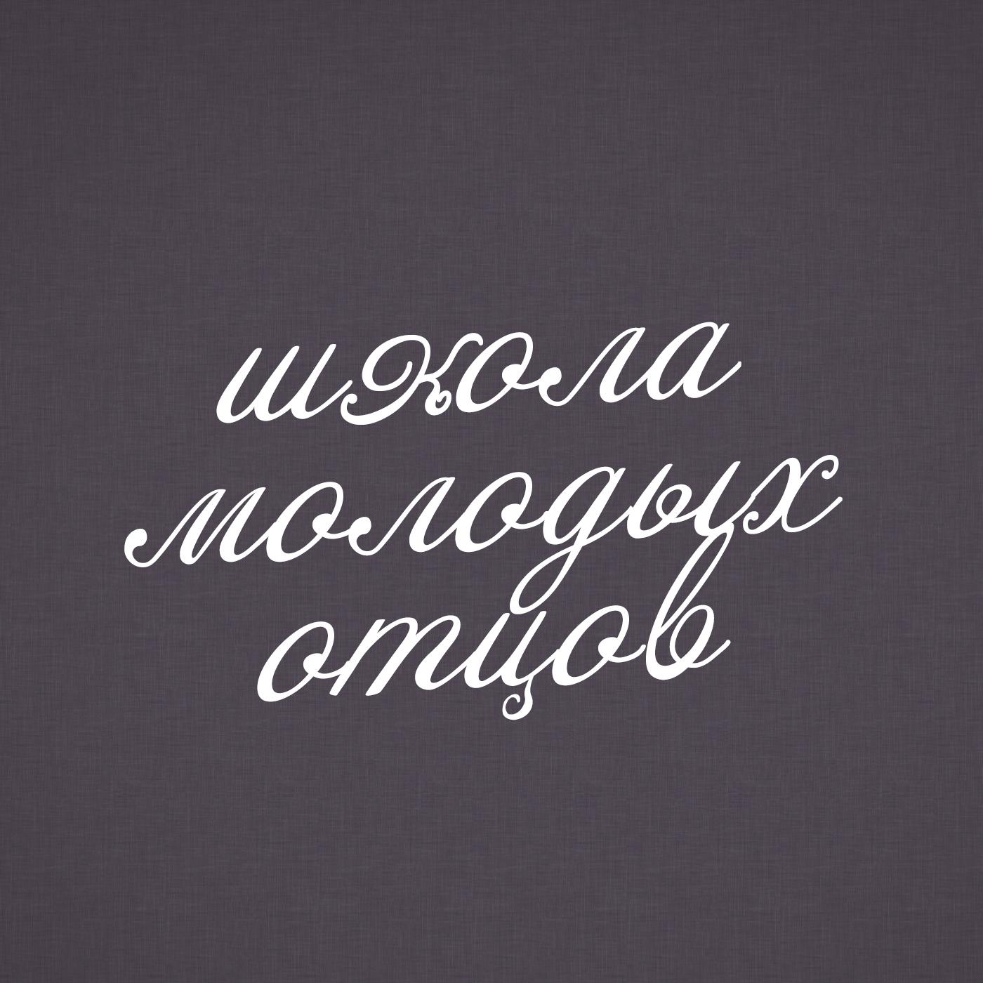 Творческий коллектив шоу «Сергей Стиллавин и его друзья» Музыкант Дмитрий Маликов в Школе молодых отцов