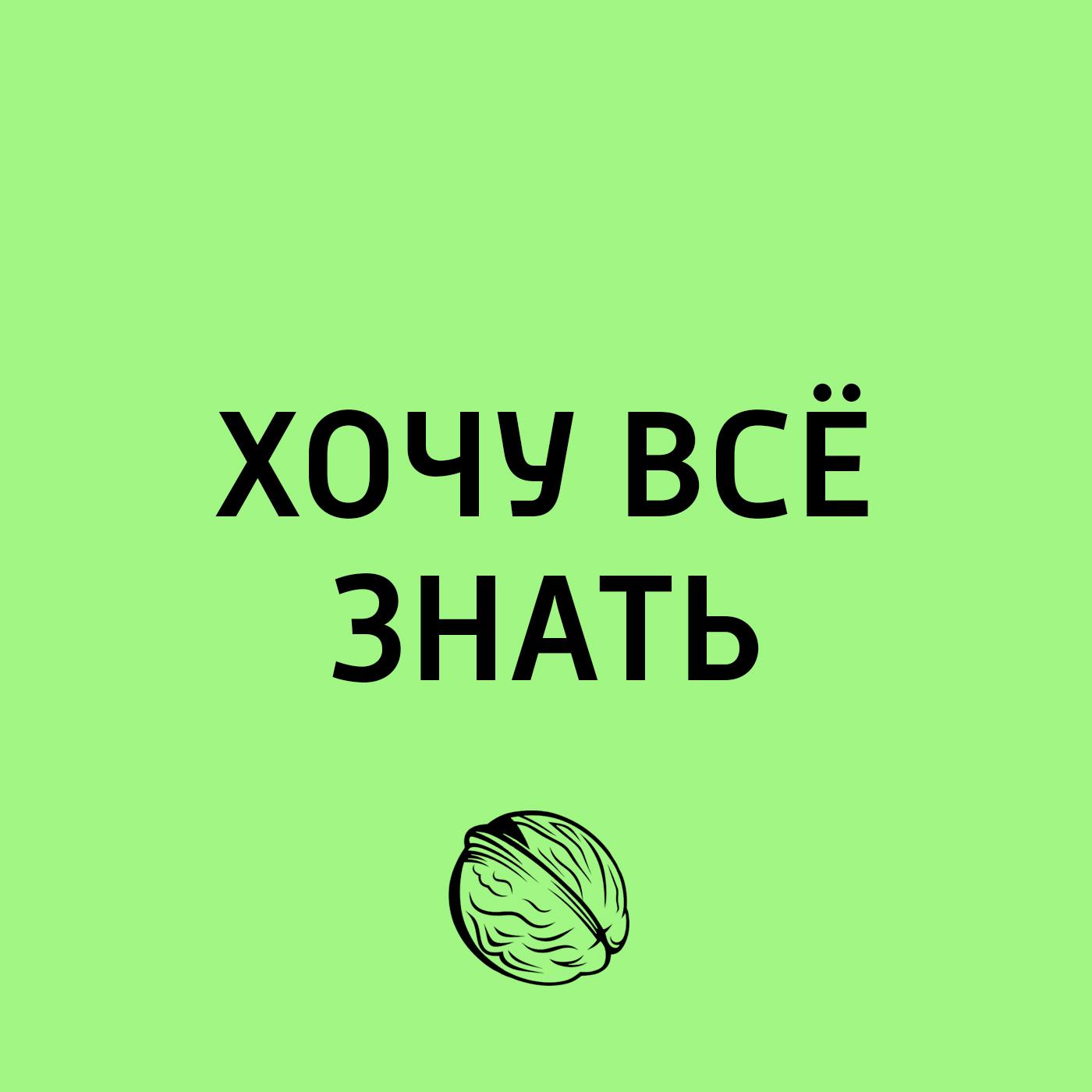 Творческий коллектив программы «Хочу всё знать» ТОП