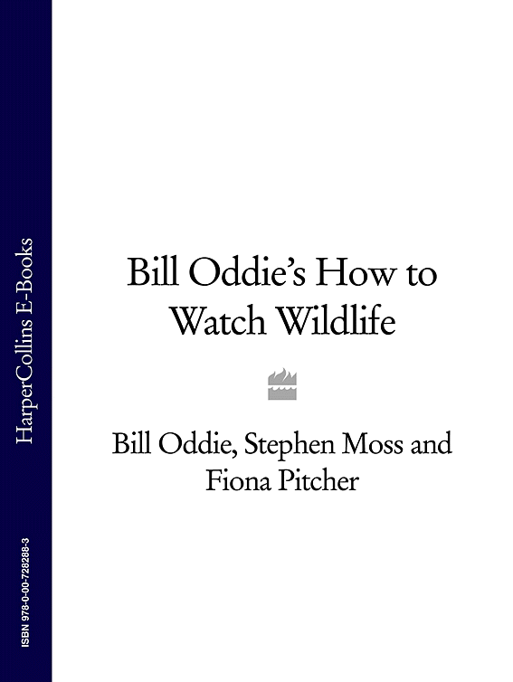 Фото - Stephen Moss Bill Oddie's How to Watch Wildlife w john roberts trauma in the family how to live with a sufferer of p t s d