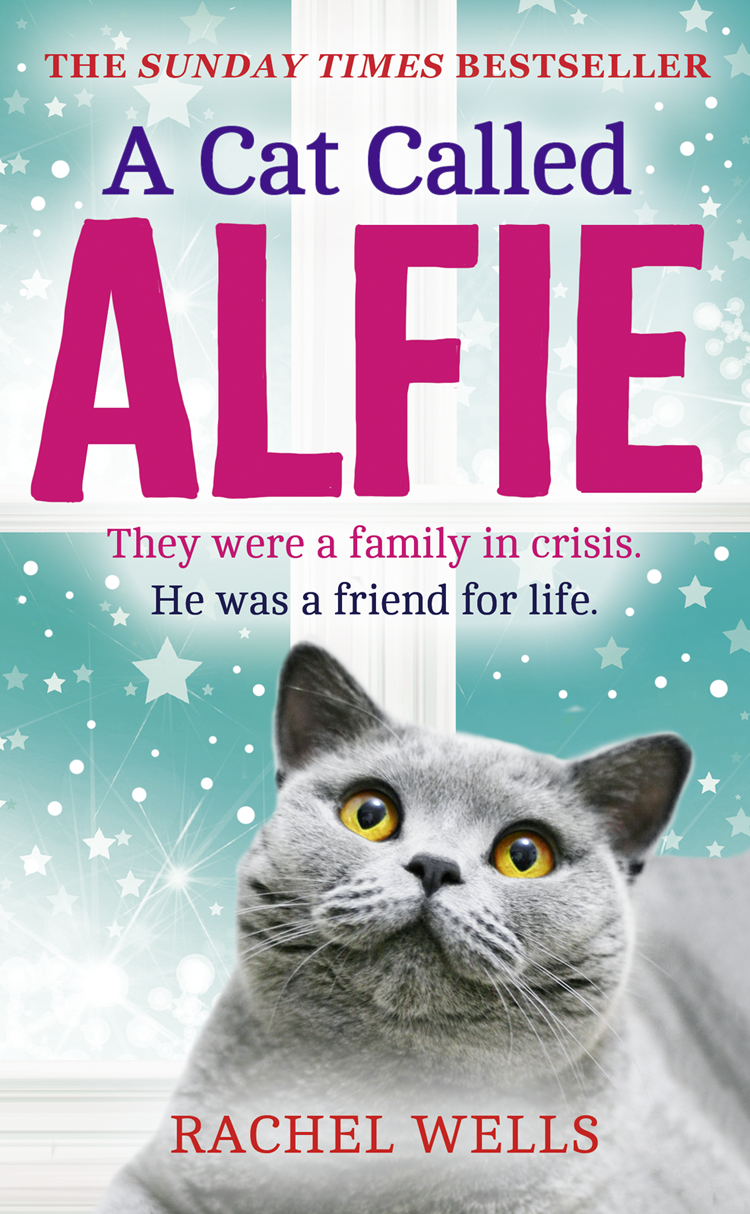 Rachel Wells A Cat Called Alfie alfie weather