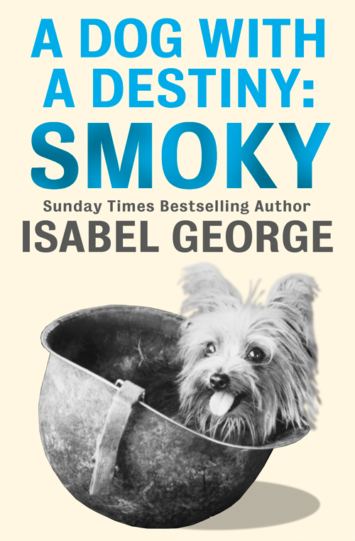 Isabel George A Dog With A Destiny: Smoky the chocolate war and beyond the chocolate war