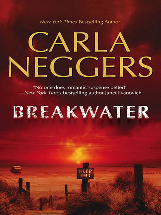 Carla Neggers Breakwater carla neggers on fire