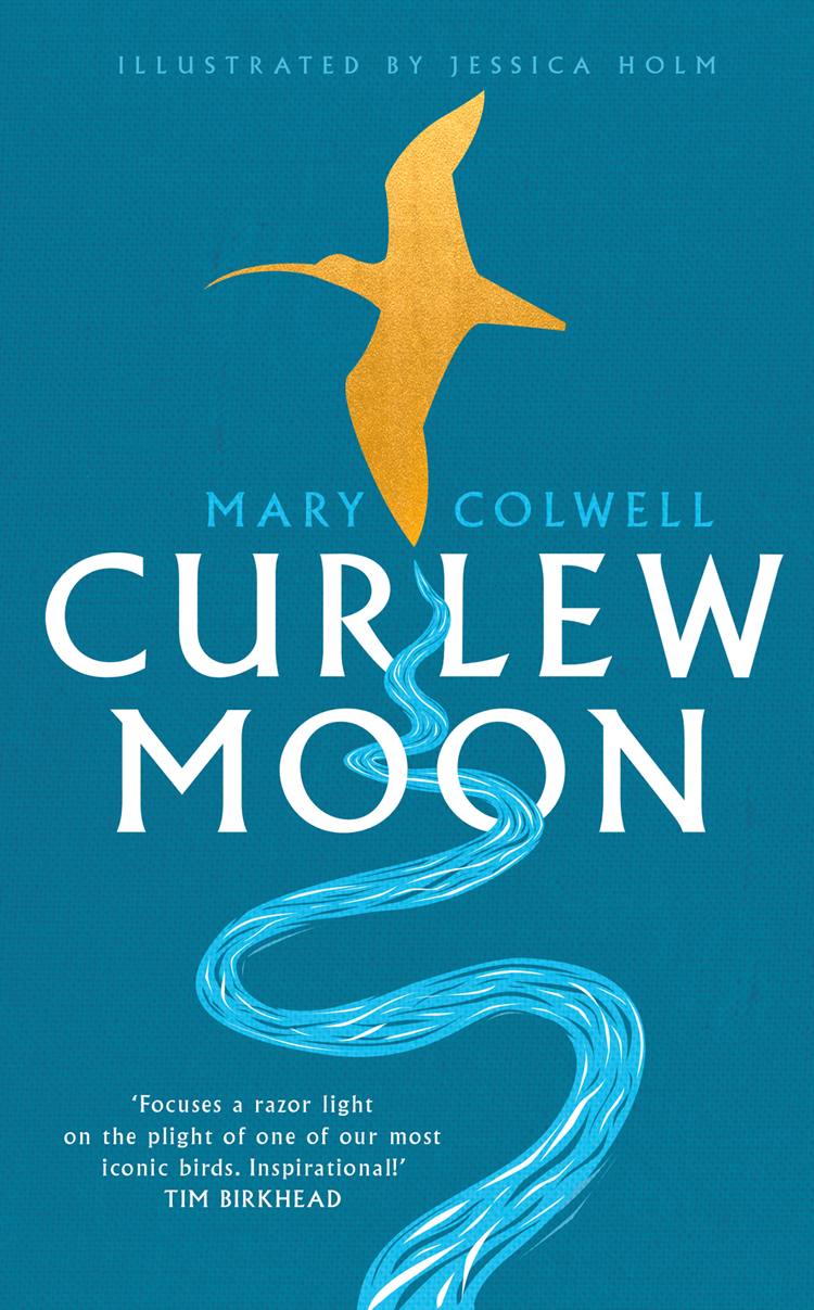 Mary Colwell Curlew Moon brokis night birds silhouette of birds in the evening sky freedom of bird flight a poetic charm and unprecedented dynamism