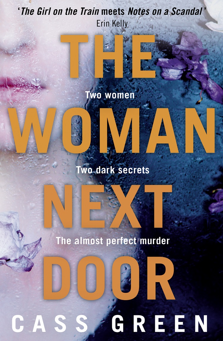 Cass Green The Woman Next Door: A dark and twisty psychological thriller футболка с полной запечаткой мужская printio хайзенберг халк