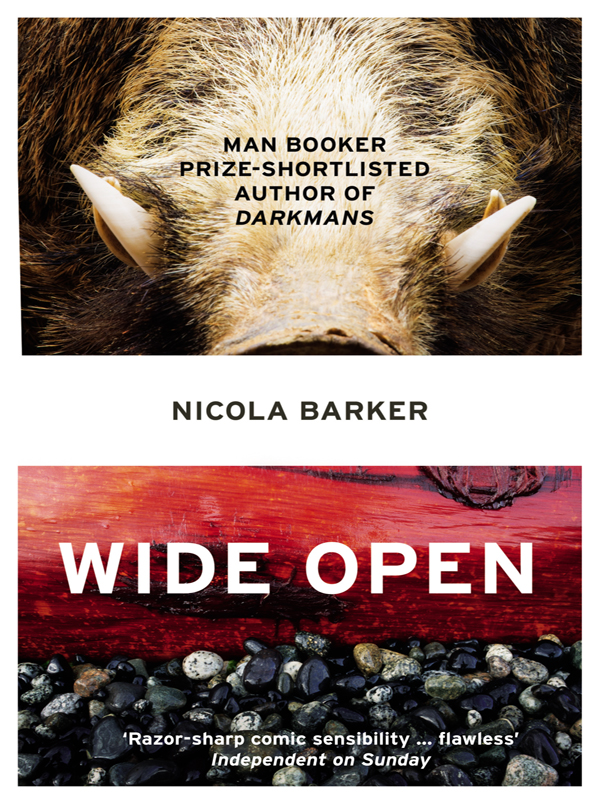 лучшая цена Nicola Barker Wide Open