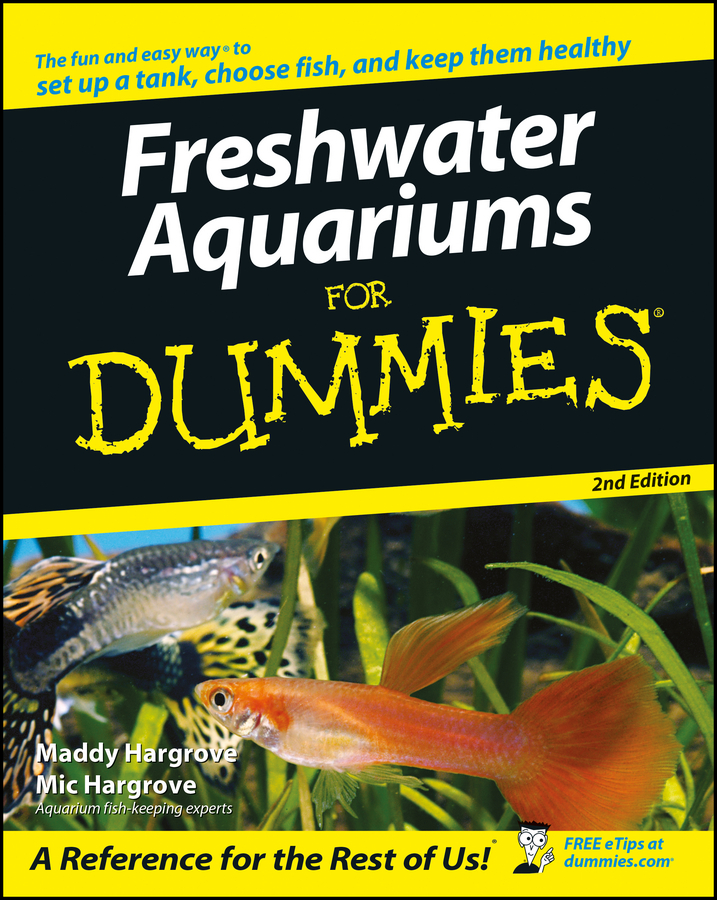 Maddy Hargrove Freshwater Aquariums For Dummies lace up sheer tank top