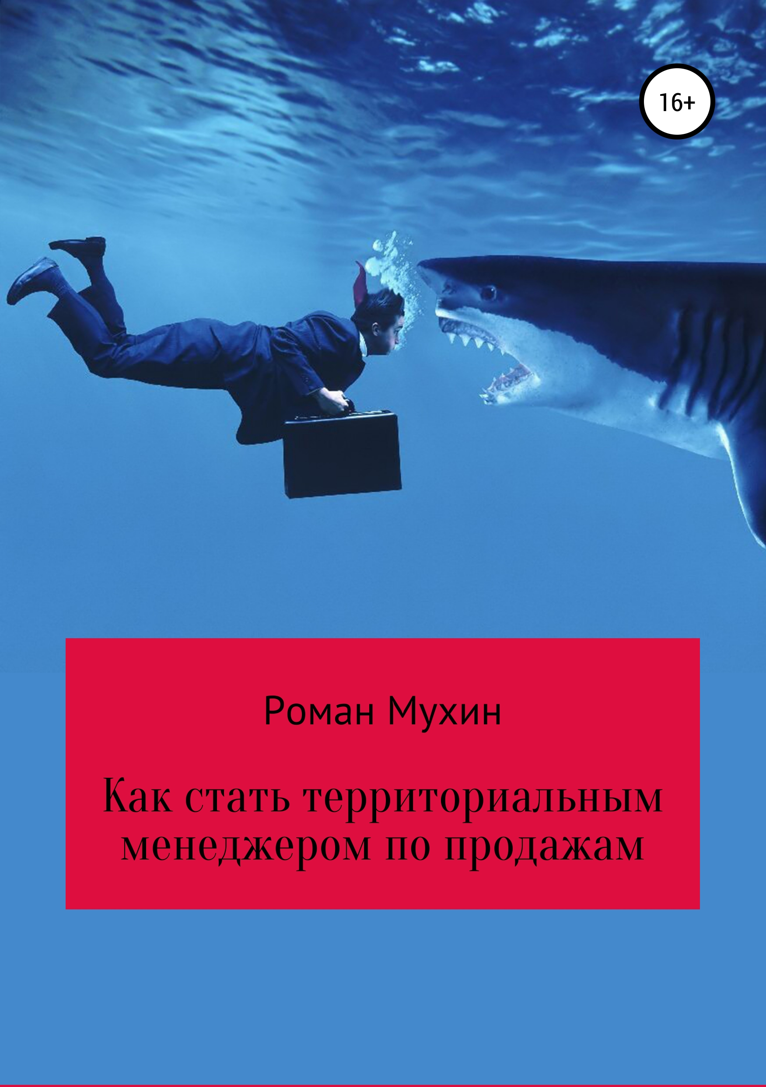 Роман Николаевич Мухин Дорога от VAN агента до ASM