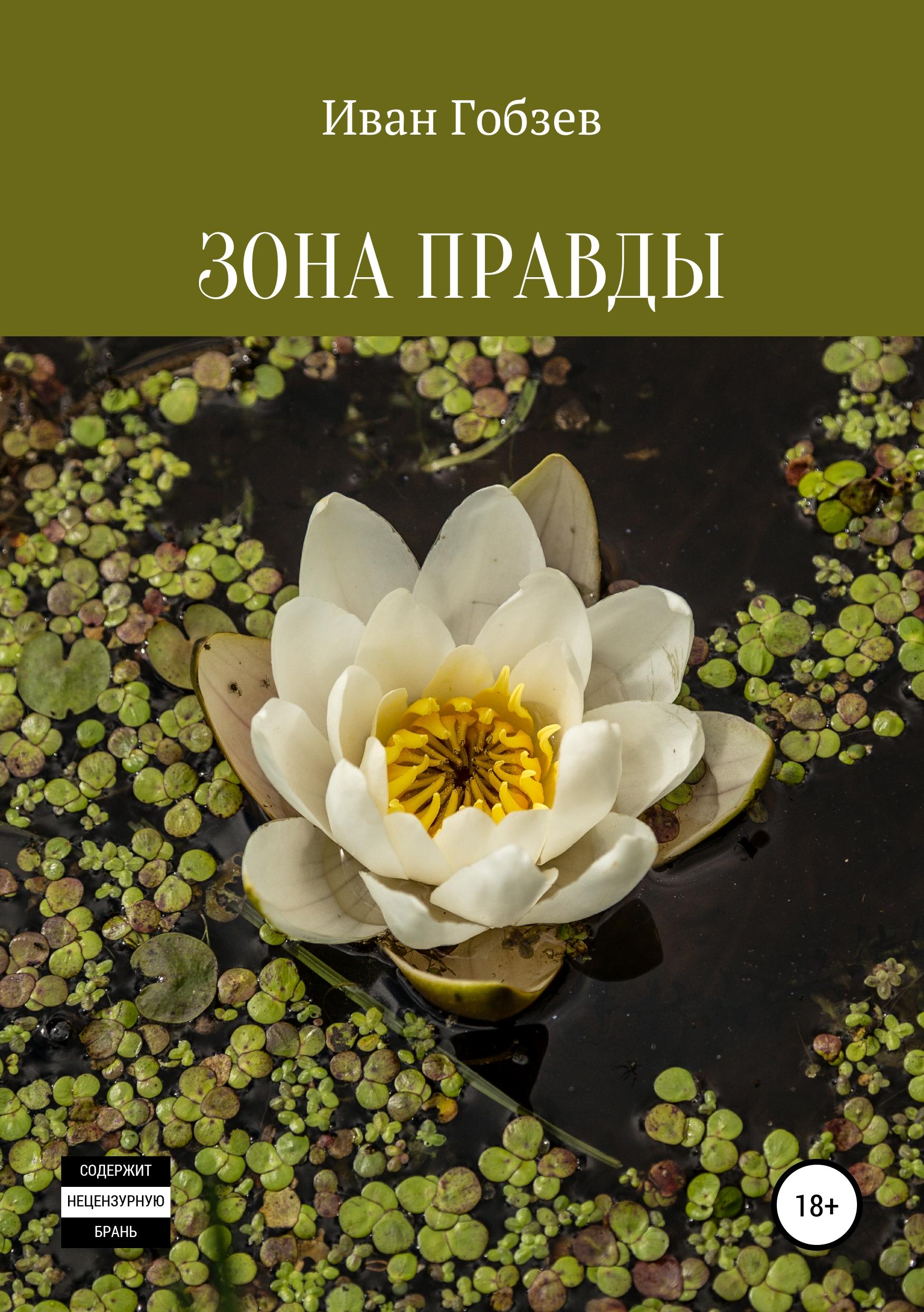 Иван Александрович Гобзев Зона Правды цена