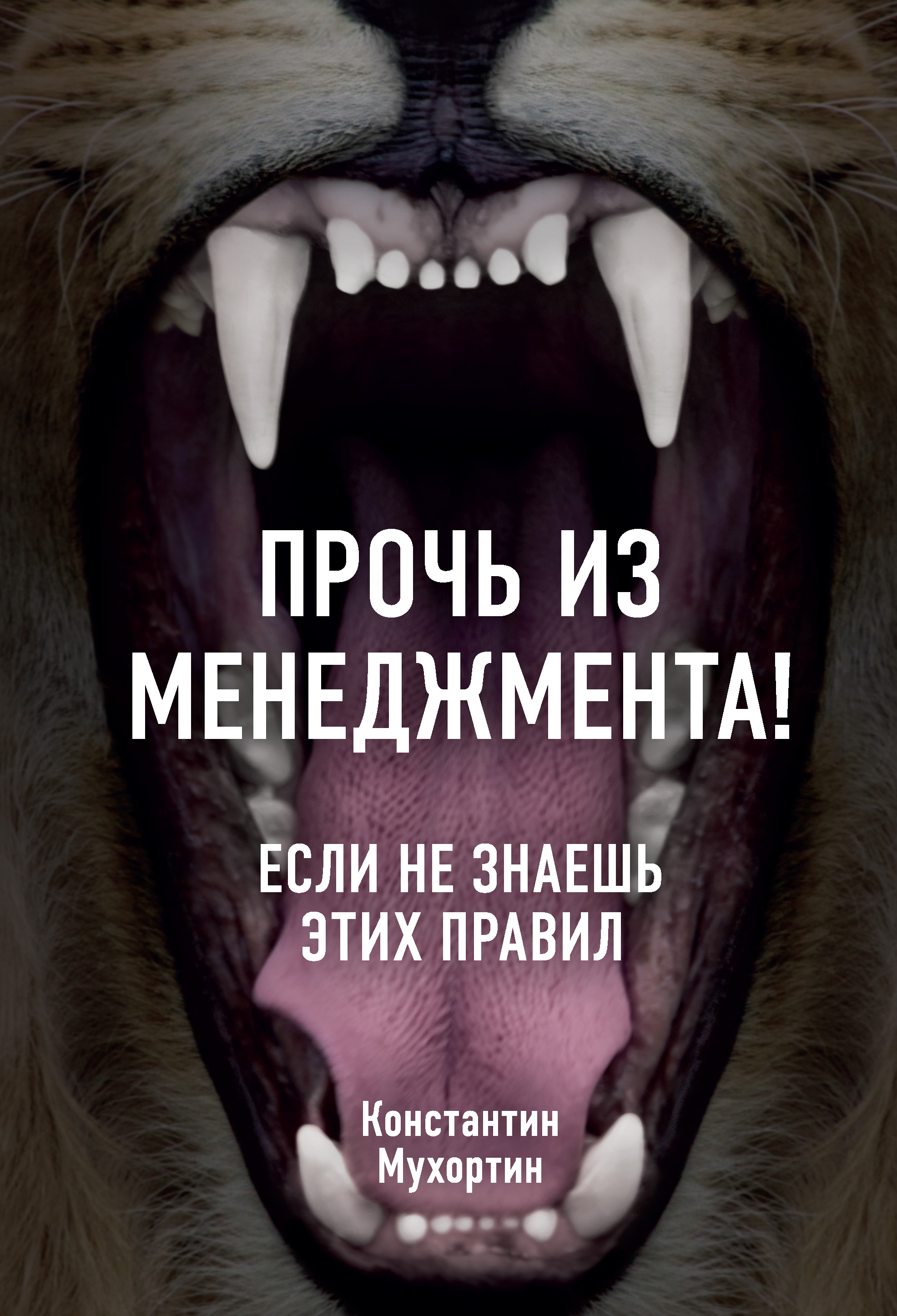 Обложка книги. Автор - Константин Мухортин