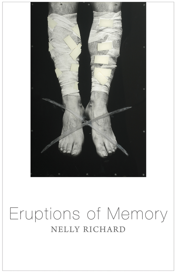 Nelly Richard Eruptions of Memory. The Critique of Memory in Chile, 1990-2015 richard antti the landscape of my memory