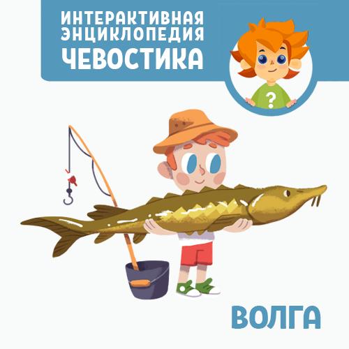 Нарине Айгистова Волга