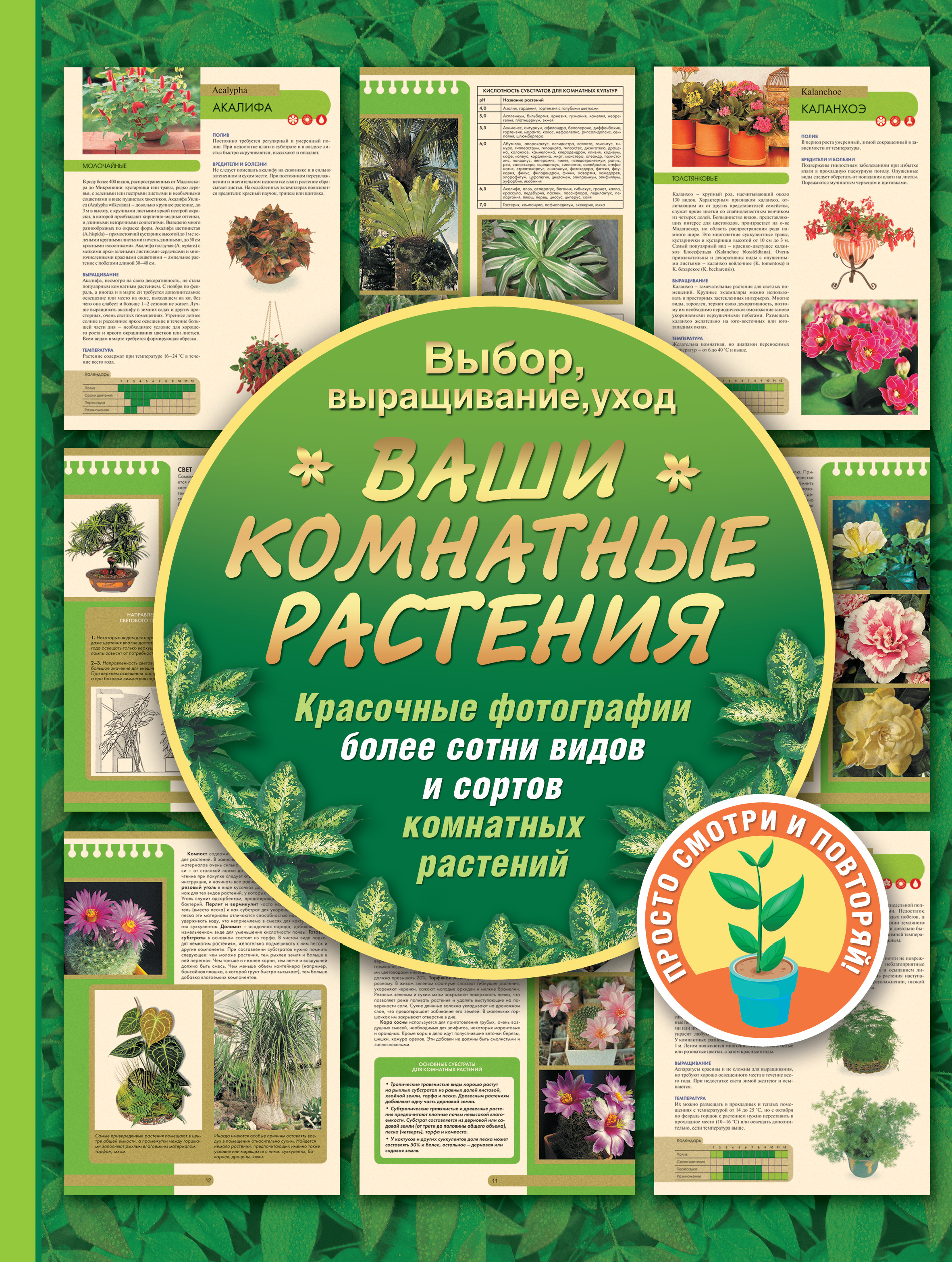 Галина Попова Ваши комнатные растения