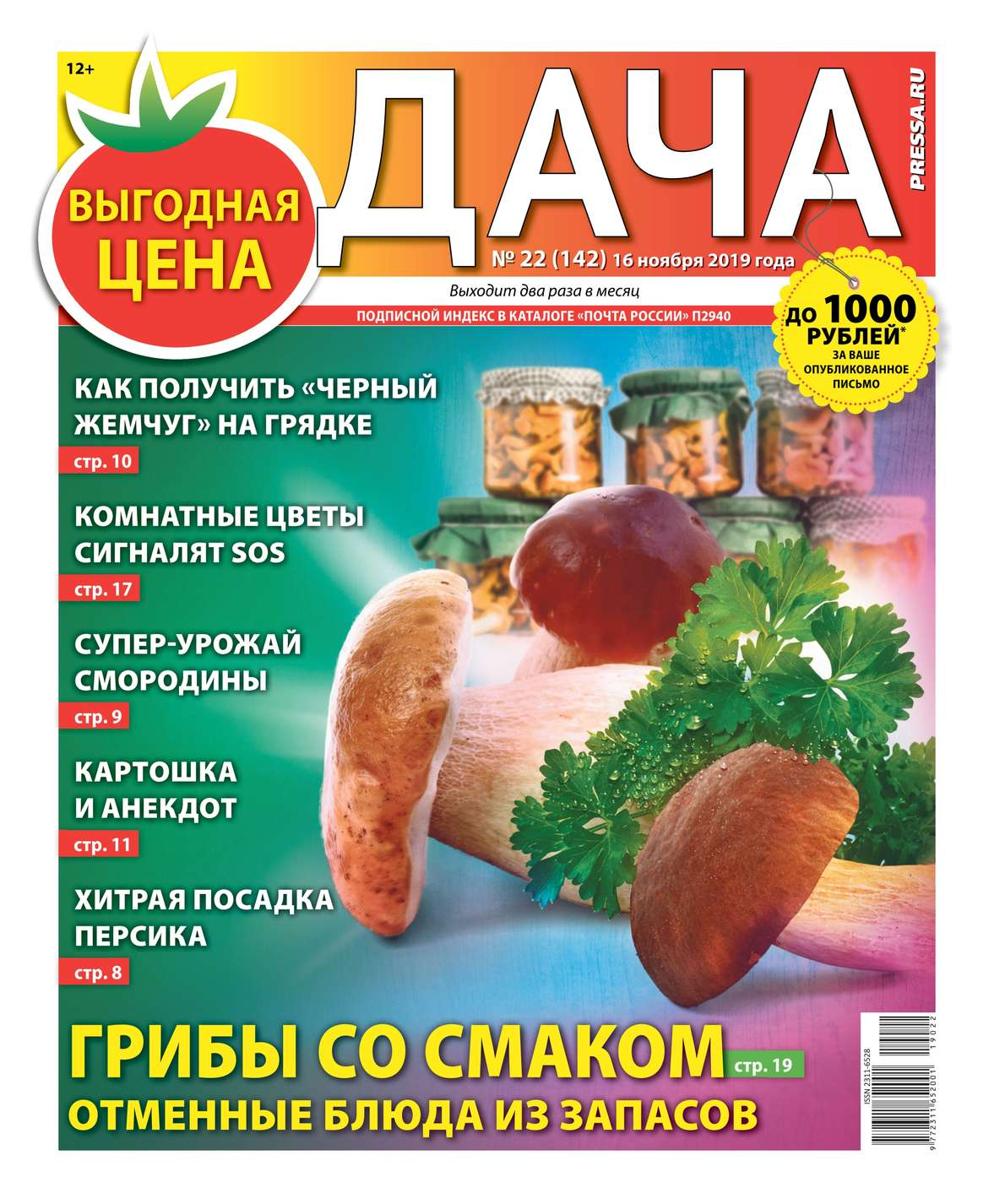 Дача Pressa.ru 22-2019