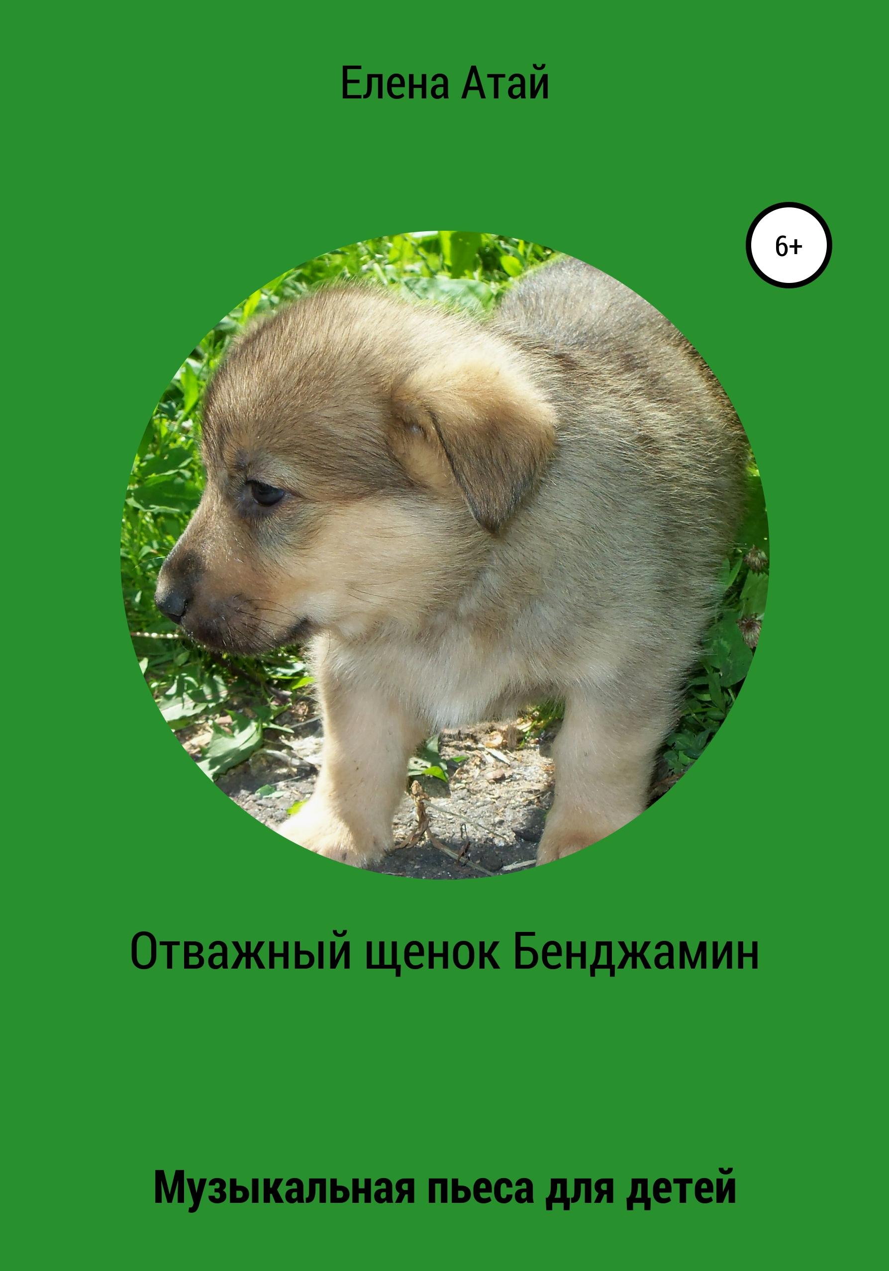 Отважный щенок Бенджамин. Музыкальная пьеса для детей