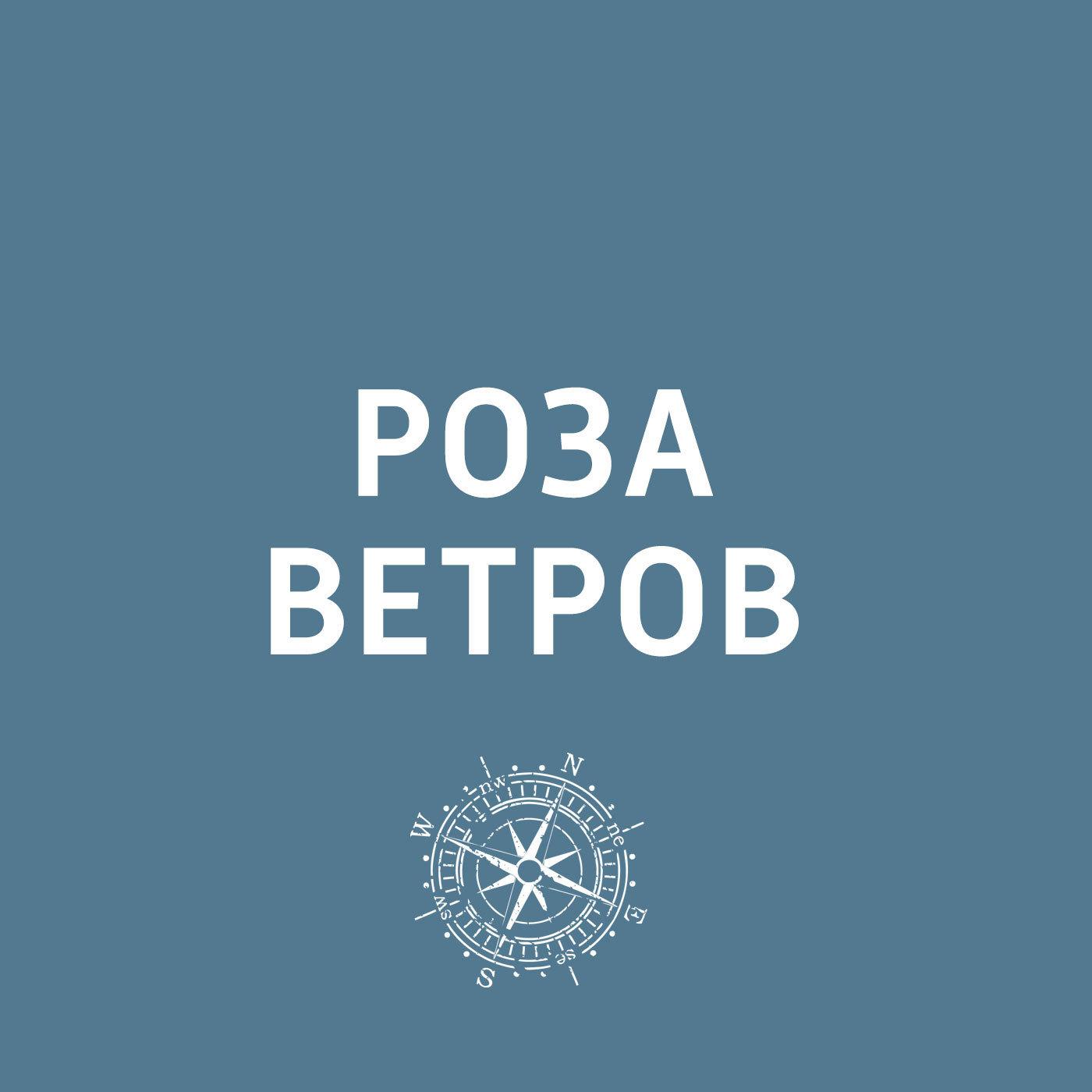 В Петербурге откроется Музей мостов