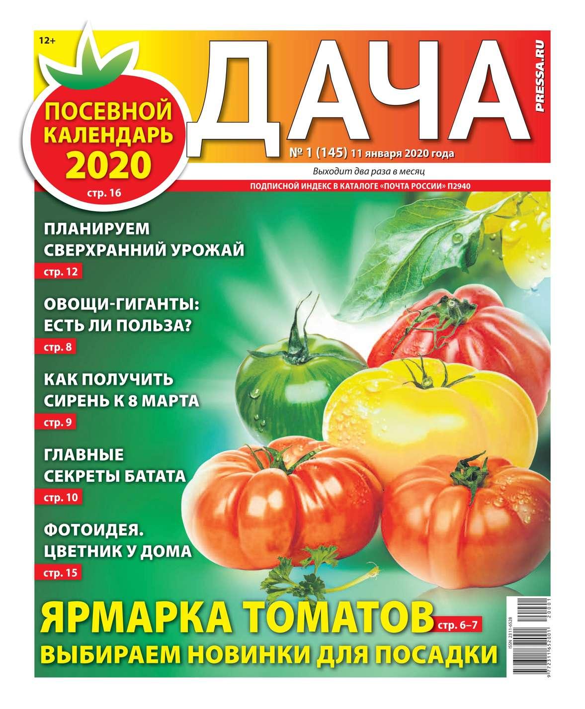 Дача Pressa.ru 01-2020