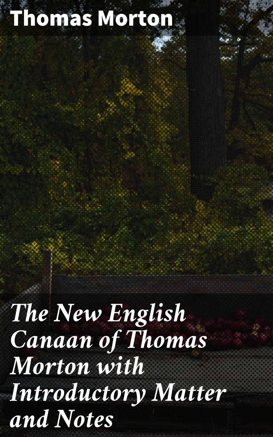 Thomas Morton The New English Canaan of Thomas Morton with Introductory Matter and Notes carl e morton morton s college student dictionary first edition