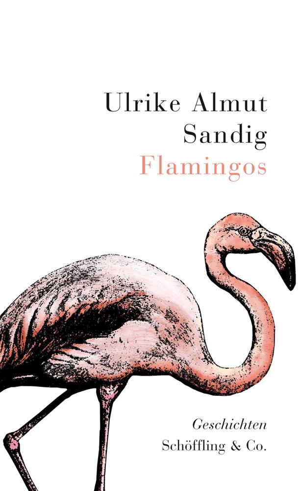 Ulrike Almut Sandig Flamingos flamingos