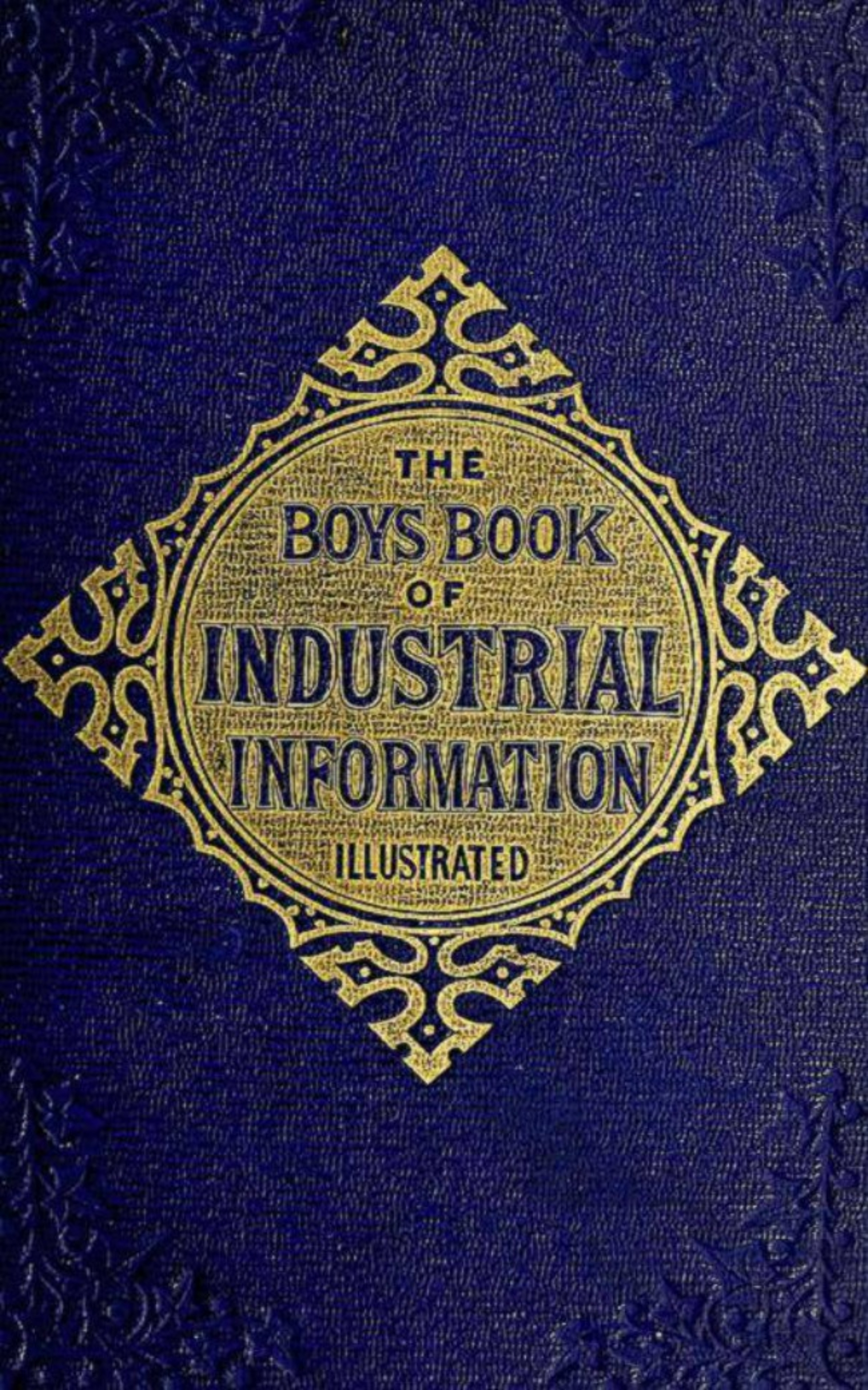 Elisha Noyce The Boy's Book of Industrial Information the extraordinary book of useless information