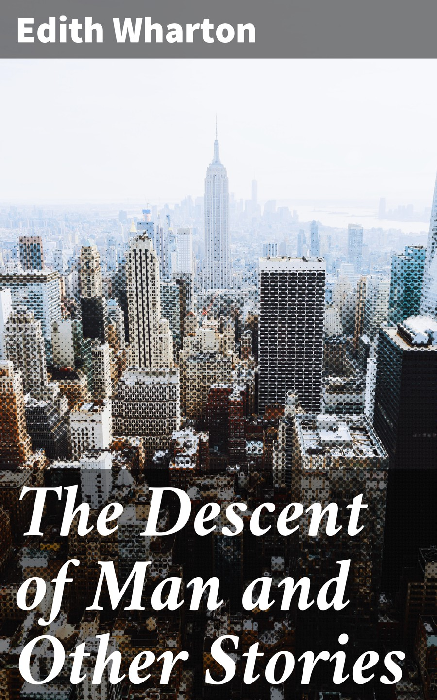 Edith Wharton The Descent of Man and Other Stories lodge d the man who wouldn t get up and other stories