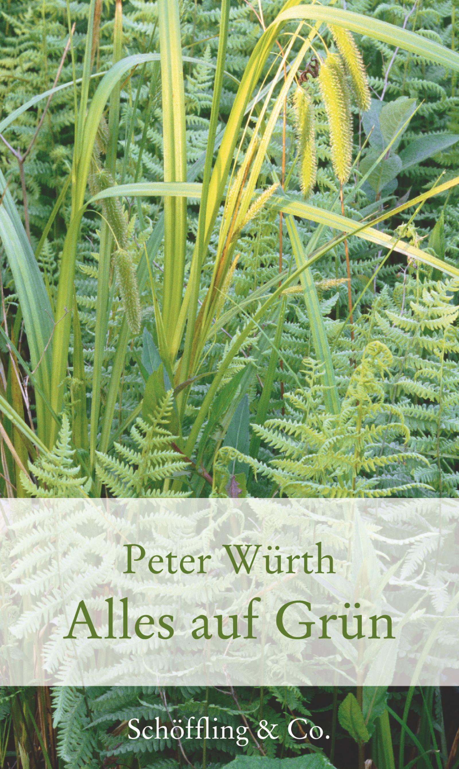 Peter Wurth Alles auf Grün