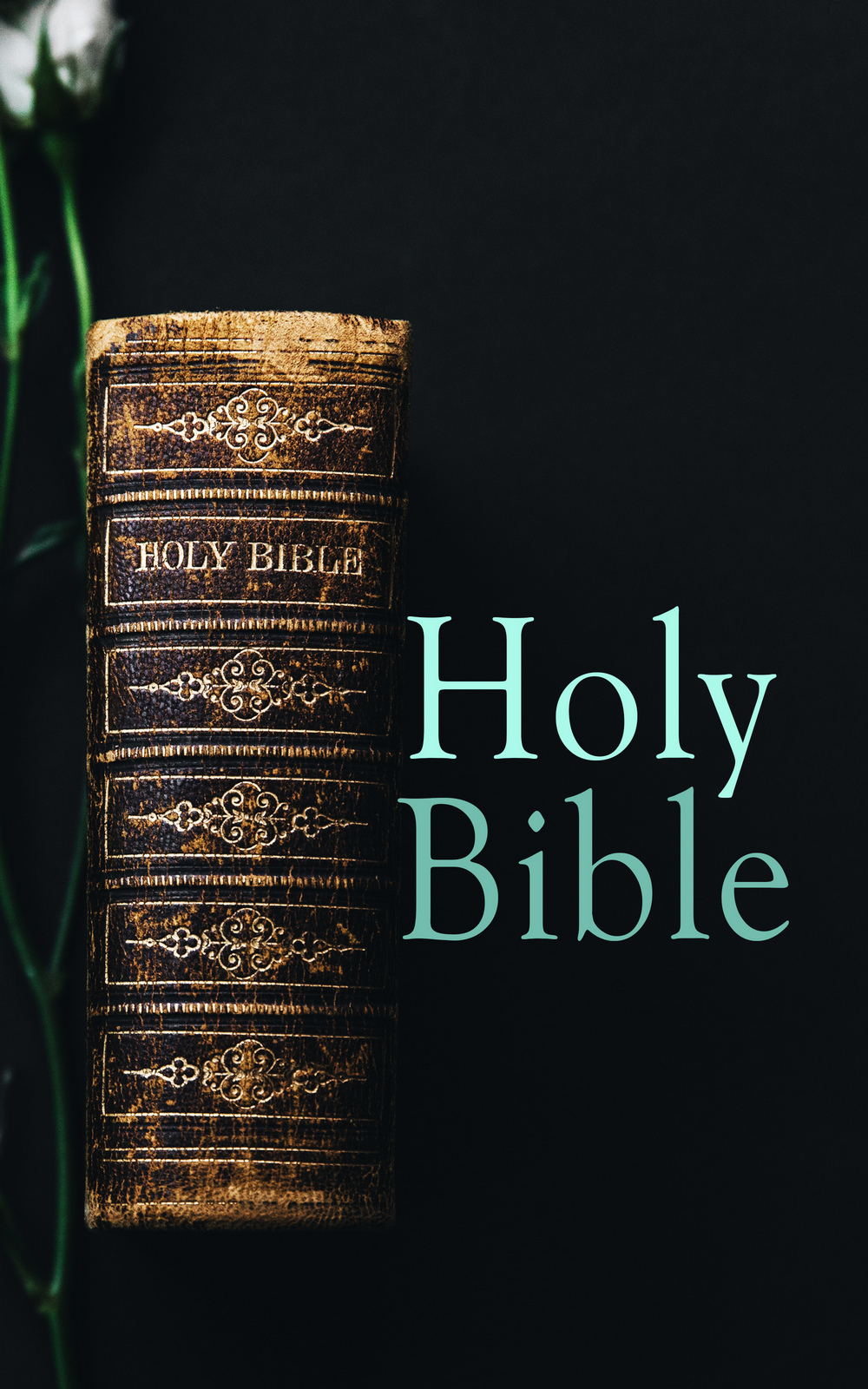 The Bible Holy Bible bonnie biafore visio 2007 bible