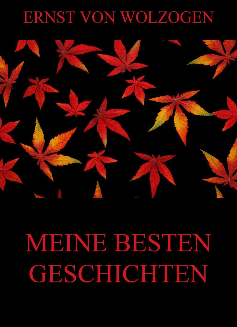цена Ernst von Wolzogen Meine besten Geschichten онлайн в 2017 году